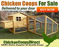 Chicken Coops Direct Banner