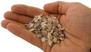 oystershell grit for chickens