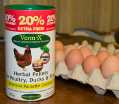verm-x with eggs