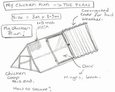 my chicken run design