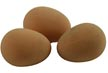Dummy chickens eggs