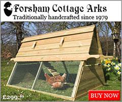 Foresham Arks Banner
